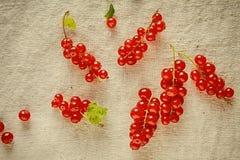 Bagas vermelhas maduras frescas no pano do vintage Fotos de Stock
