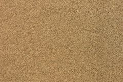 Bagasse board texture Royalty Free Stock Images