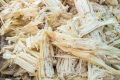 Bagasse Royalty Free Stock Images
