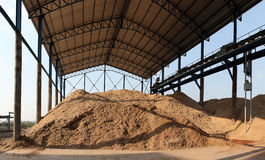 Bagasse stock pile. Bagasse is the fibrous matter that remains after sugarcane or sorghum stalks are crushed to extract their juice. Bagasse is used as a biofuel Stock Photo