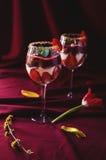 Bagatelle de fraises, de chocolat et de mascarpone Image libre de droits