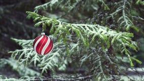 Bagattella di Natale che oscilla sull'albero di abete nevoso archivi video