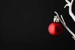 Bagattella rossa di Natale sull'albero bianco Fotografie Stock Libere da Diritti