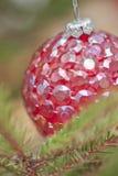 Bagattella rossa in un albero di Natale Fotografia Stock