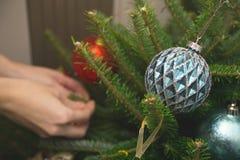 Bagattelle blu su un albero di abete Fotografia Stock