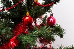 Bagattelle rosse su un albero di Natale Immagini Stock
