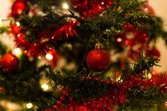 Bagattelle rosse su un albero di Natale Immagine Stock Libera da Diritti