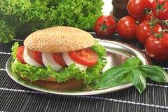 Bagel com tomate e mozzarella imagens de stock royalty free