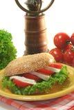 Bagel com tomate e mozzarella imagem de stock