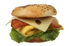 Bagel Egg and Bacon Sandwich Royalty Free Stock Photography