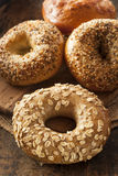 Bagel entier organique sain de grain photo libre de droits
