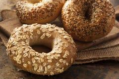 Bagel entier organique sain de grain photos stock
