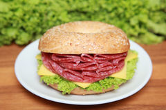Bagel with Salami Stock Photography
