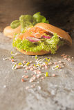 bagel with salmon and germinated sprouts pink salt Stock Photography