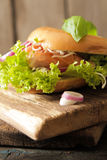 bagel with salmon and germinated sprouts pink salt Royalty Free Stock Photos
