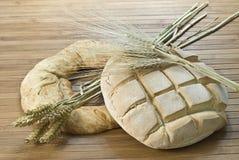 bageln släntrar royaltyfri fotografi