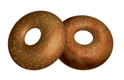 Bagels. Illustration of poppy seed amd sesame seed bagels Stock Image