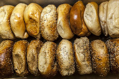 Bagels de New York Photos libres de droits