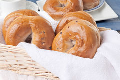 Bagels do mirtilo Imagem de Stock Royalty Free