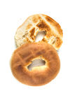 Bagels grillés blancs simples Photo libre de droits