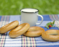 Bagels on tartan tablecloth Royalty Free Stock Image
