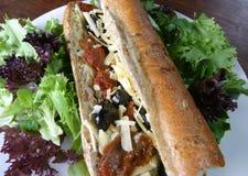 bagettblack torkade tomotoes för mozzarellaolivgrönsun Royaltyfri Foto