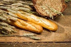 Bagetter och en korg mycket av korn med öron royaltyfria bilder