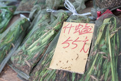 Bagged grasshoppers on sale at Yuen Po Bird Market, Mong Kok, Hong Kong Royalty Free Stock Photos
