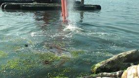 Bagger Working im Meer Marine Debris Pollution Removal stock footage