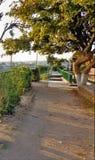 Bagh-e-Bahu公园步行方式 免版税库存照片