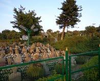 Bagh-e-Bahupark in Jammu u. in Kaschmir Stockbilder