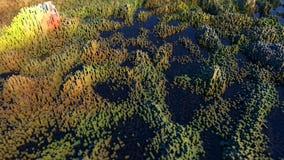 Bagienny krajobraz robić z colourful sześcianów 3d sceny (7) Fotografia Stock