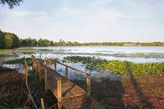 Bagienny molo w Florida obrazy stock