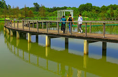 Bagna przejście wetlandpark w Hong kong obrazy stock