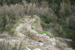Bagna Vignoni gorąca wiosna termiczna woda, Tuscany Zdjęcia Stock