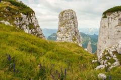 Bagni la roccia nelle alpi austriache un giorno nuvoloso Fotografia Stock Libera da Diritti