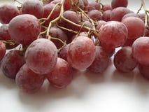 Bagni la spazzola di grande uva rosa Immagine Stock Libera da Diritti