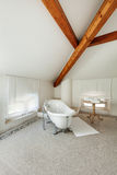Bagno classico con la vasca bianca Fotografia Stock