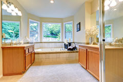 Bagno con due gabinetti di vanità Fotografia Stock