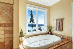 Bagno con la vasca da bagno del mulinello e la bella vista Fotografia Stock