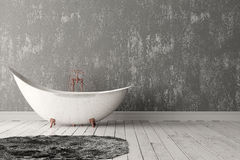 Bagno con tappeto, il pavimento di legno e la parete ruvida Immagini Stock Libere da Diritti