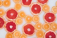 Bagno del latte con le fette delle arance e dei pompelmi Vista superiore Disposizione piana fotografia stock
