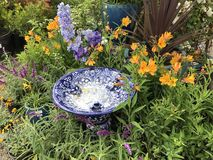 Bagno dell'uccello e bei fiori diy Fotografia Stock Libera da Diritti