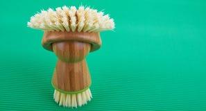 Bagno della spazzola Immagine Stock
