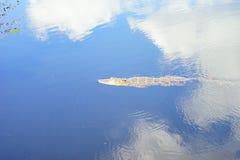 Bagno di Sun Immagini Stock