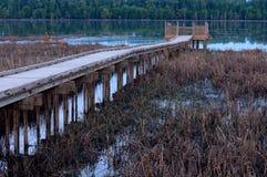 Bagno i Boardwalk wzdłuż Minnestoa rzeki Obraz Royalty Free