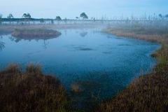 Bagno jezioro Obraz Stock