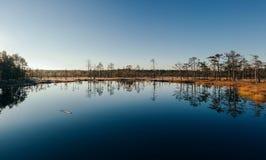 Bagno krajobraz Zdjęcie Royalty Free