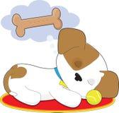 Bagno sveglio del cucciolo Fotografie Stock