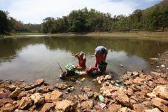 Bagno in un lago Fotografia Stock Libera da Diritti